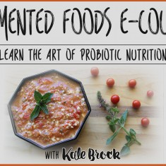 kale brock fermented food ecourse